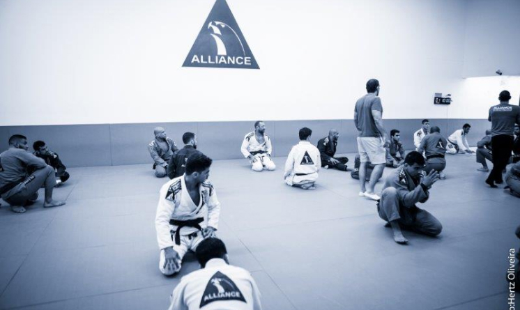 Houston Brazilian Jiu-Jitsu Adults BJJ Program