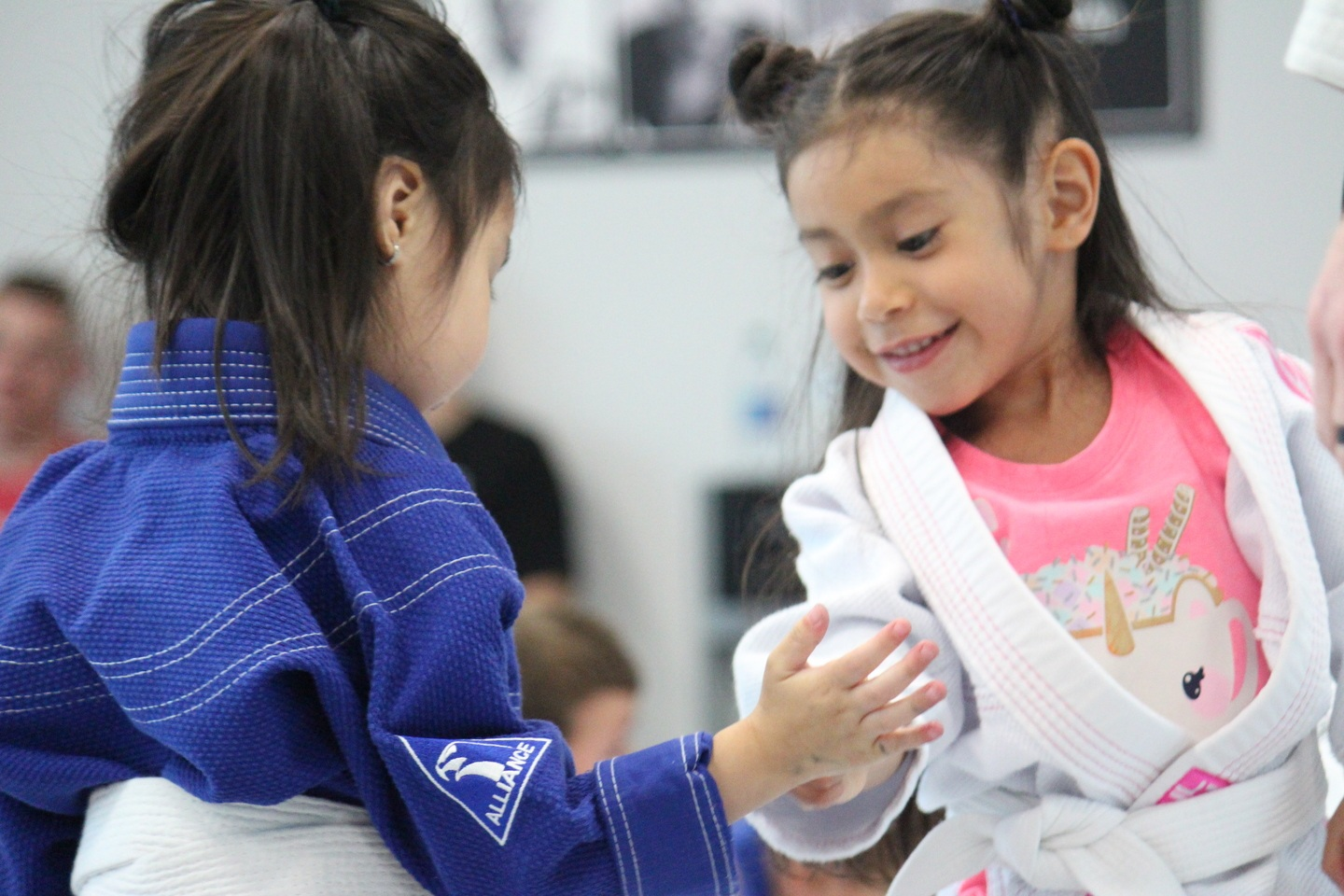 Houston Brazilian Jiu-Jitsu Program Kids Program